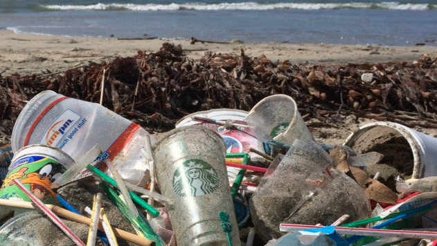 Plastic are under attack after big companies try to be environmentally friendly.