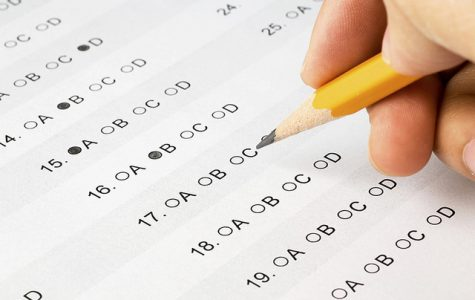 Assessment Testing: pointless or crucial?