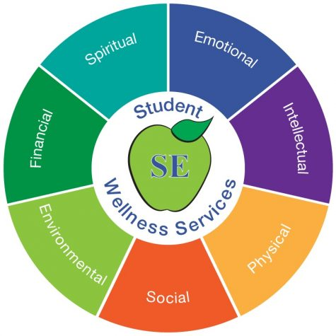 The Wellness Wheel provides insight on activities which help in enhancing your physical, intellectual, spiritual, financial, social, emotional, occupational and environmental wellness.
