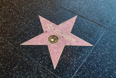 President Donald Trump, a celebrity and business mogul, has had his Hollywood Walk of Fame star vandalized many times since he began his presidential campaign in 2016.